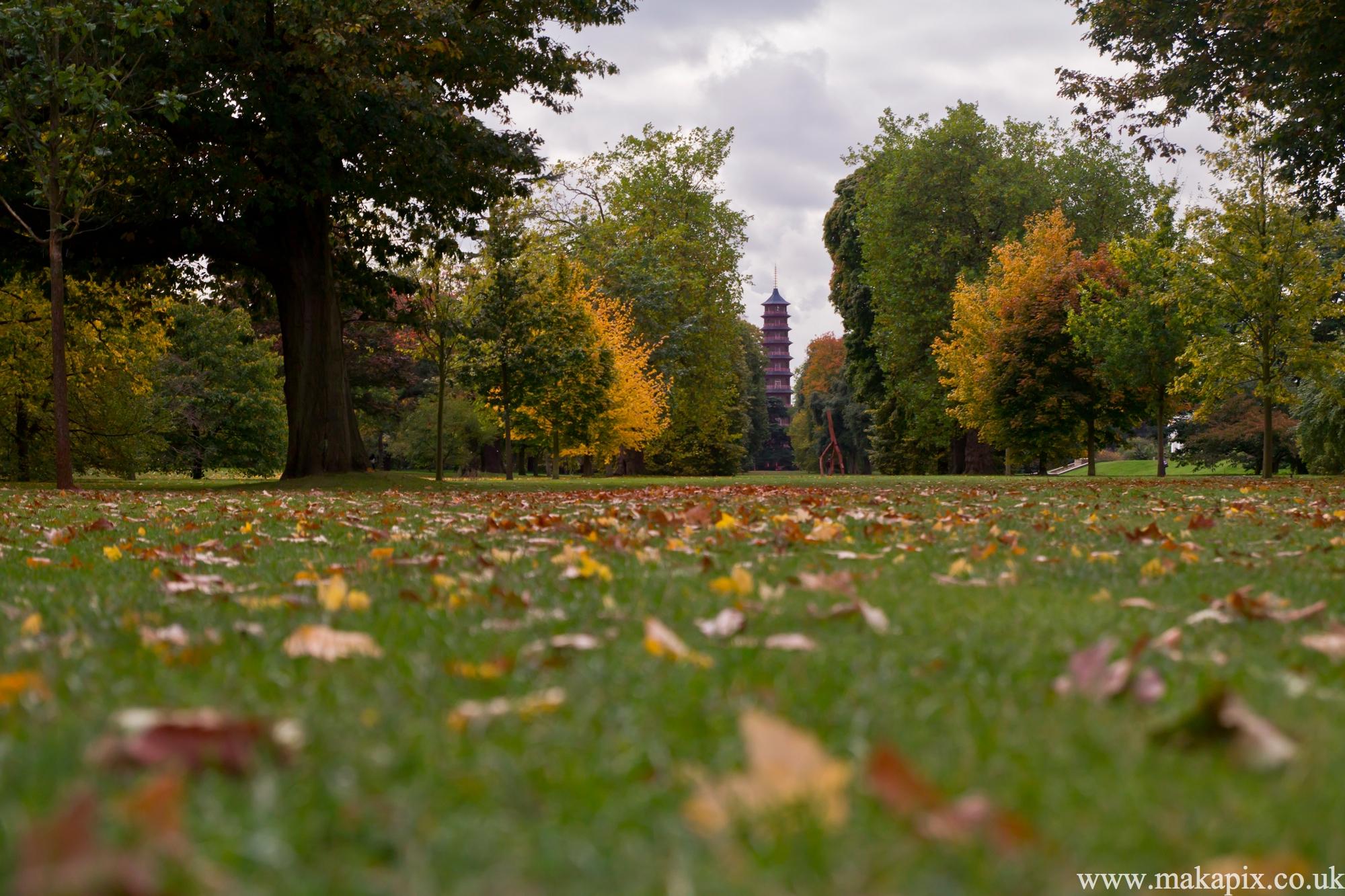 kew gardens, london 2012