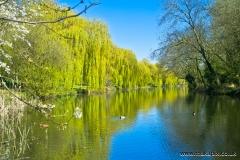 Parklands Open Space, Upminster, Essex, England