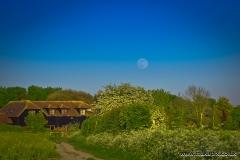Moonrise in Upminster, Essex, England